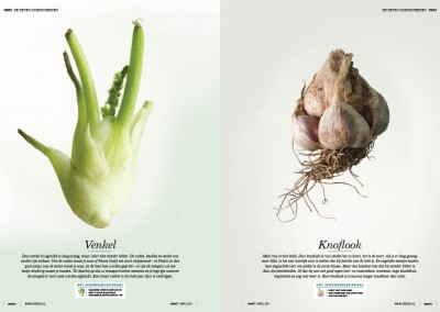 36_magazinevegetable3